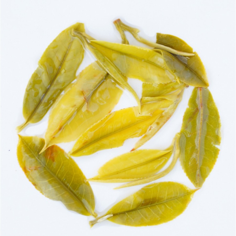 Arya Pearl White Tea
