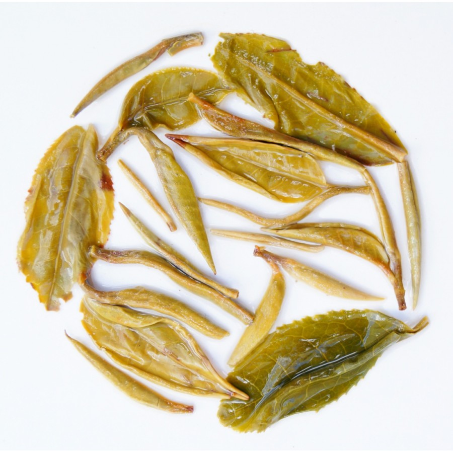 Glenburn Moonshine White Tea