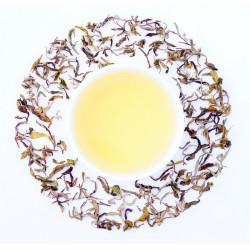 Gopaldhara Exotic Moonlight White