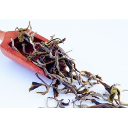 Jethikupi White Tea
