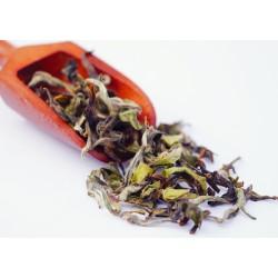 Rohini Jethikupi- The Delicacy of Spring