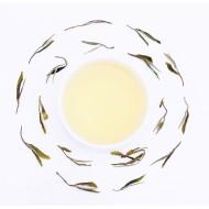 Nilgiri Slender Tea